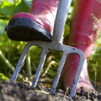 Gecko Landscape generic Gardening diggng soil WEB.jpg