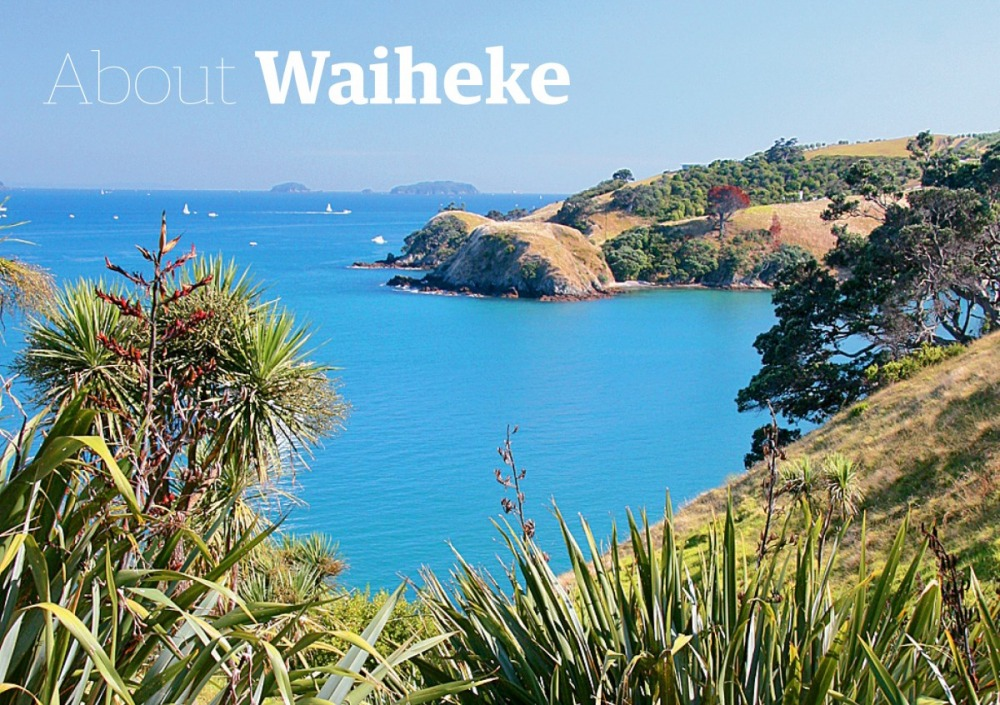 About Waiheke graphic BC