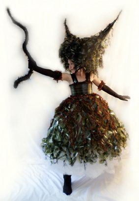 Ann Skelly World of Wearable Art