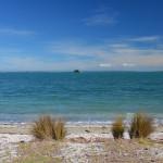 Whakanewha Photo Copyright Vicki Jayne, Gulf News