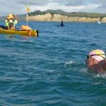 Chopper Swim Orca Encounter