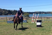 Waiheke Pony Club Camp