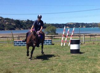 Waiheke Pony Club Camp