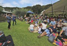 Wellington City Shake Em On Downers