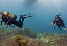 Waiheke High School Dive Trip