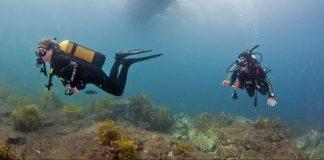 Waiheke High School Dive Trip