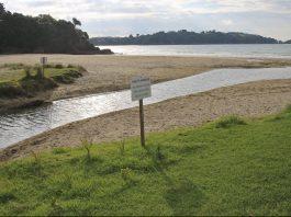 Auckland city Council Reticulation Little Oneroa Stream