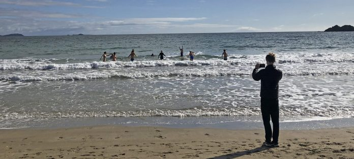 Taking the plunge - swimmers brave the biting cold waters at Palm Beach.