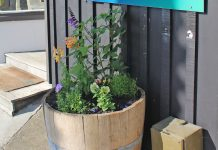 New barrel gardens in Oneroa
