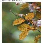 Autumn real estate web cover 180321ML