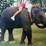 N WISCA Animal advocate Glenda atop resident elephant sup